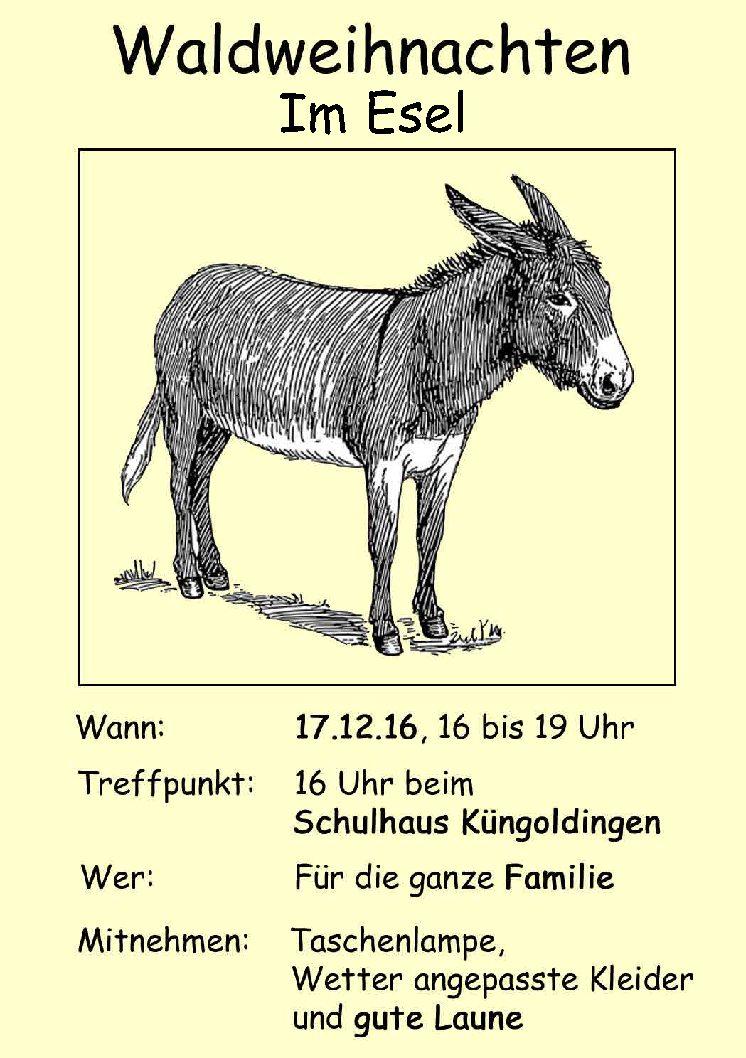 17. 12. Waldweihnacht